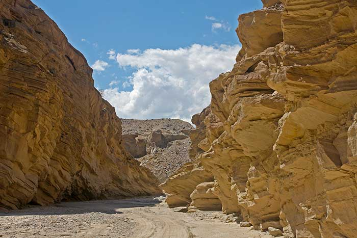 Anza Borrego Desert State Park Trails Desertusa