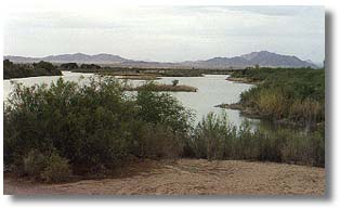 Desert Amp River Regional Parks Riverside County Ca