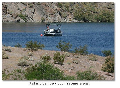 Lake mohave part of lake mead nra desertusa for Lake mohave fishing