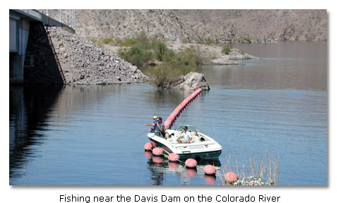 Fishing on the Colorado River - DesertUSA