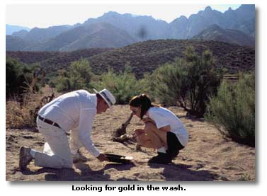 Looking for Gold in Arizona's Washes - DesertUSA
