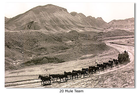 Borax And The 20 Mule Team In Death Valley