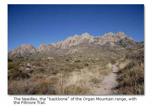 western diamondback rattlesnake range map with Organ Mountains on YWxsaWdhdG9yIGdhciBiaXRl also Lhbergstrom wordpress furthermore E Yellow Bellied sea snake besides 12 together with Diamond Back.