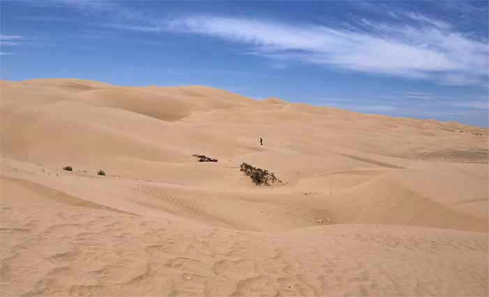 Deserts are often defined as areas that receive less than 10 inches of average annual rainfall, but a more accurate defining factor is aridity.
