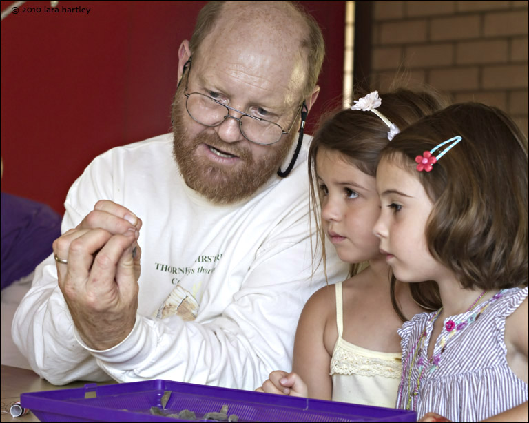 bob allen ties pupa, a chrysalis, to a stick so the emerging butterfly can be seen by viewers. the stick is placed in the vestibule of the butterfly pavilion. girl middle emeri, girl right - both 4.5