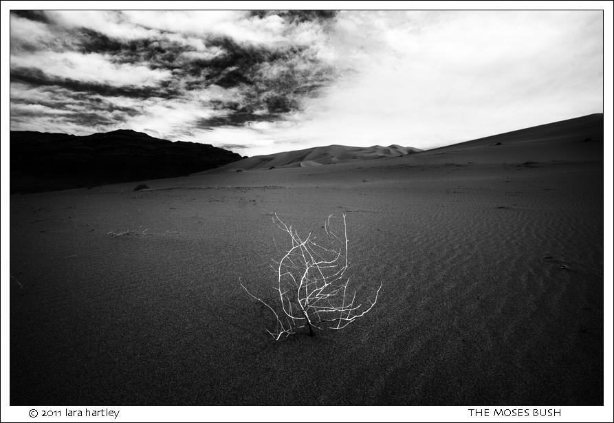 6770_eureka-dunes_nik-4