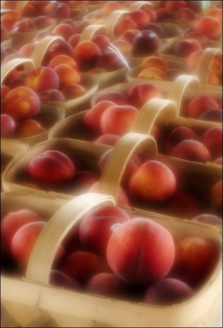 davidmorel_softfocus_peaches