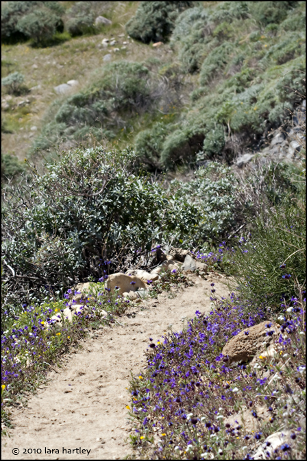 9173_whitewater-preserve-pct