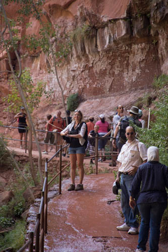 The trail is paved up to the first Emerald Pool and there are small waterfalls coming off the cliffs above.