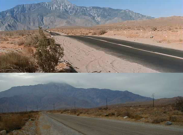 the mojave yucca essay Mojave desert writers 73 likes this is the genesis of a new writers' organization and community, mojave desert writers.