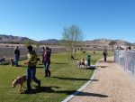 Yucca Valley Dog Park