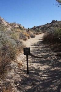 Lost Palms Trailhead.