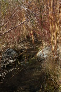 Water at the second crossing.