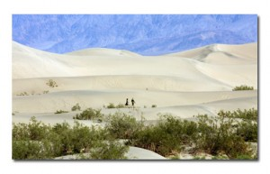 Sand dunes at Death Valley National Park.