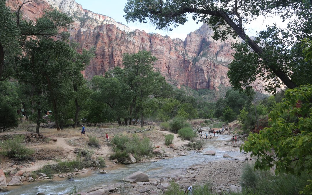Summer Road Trip: A Quick Tour of Utah's Parks