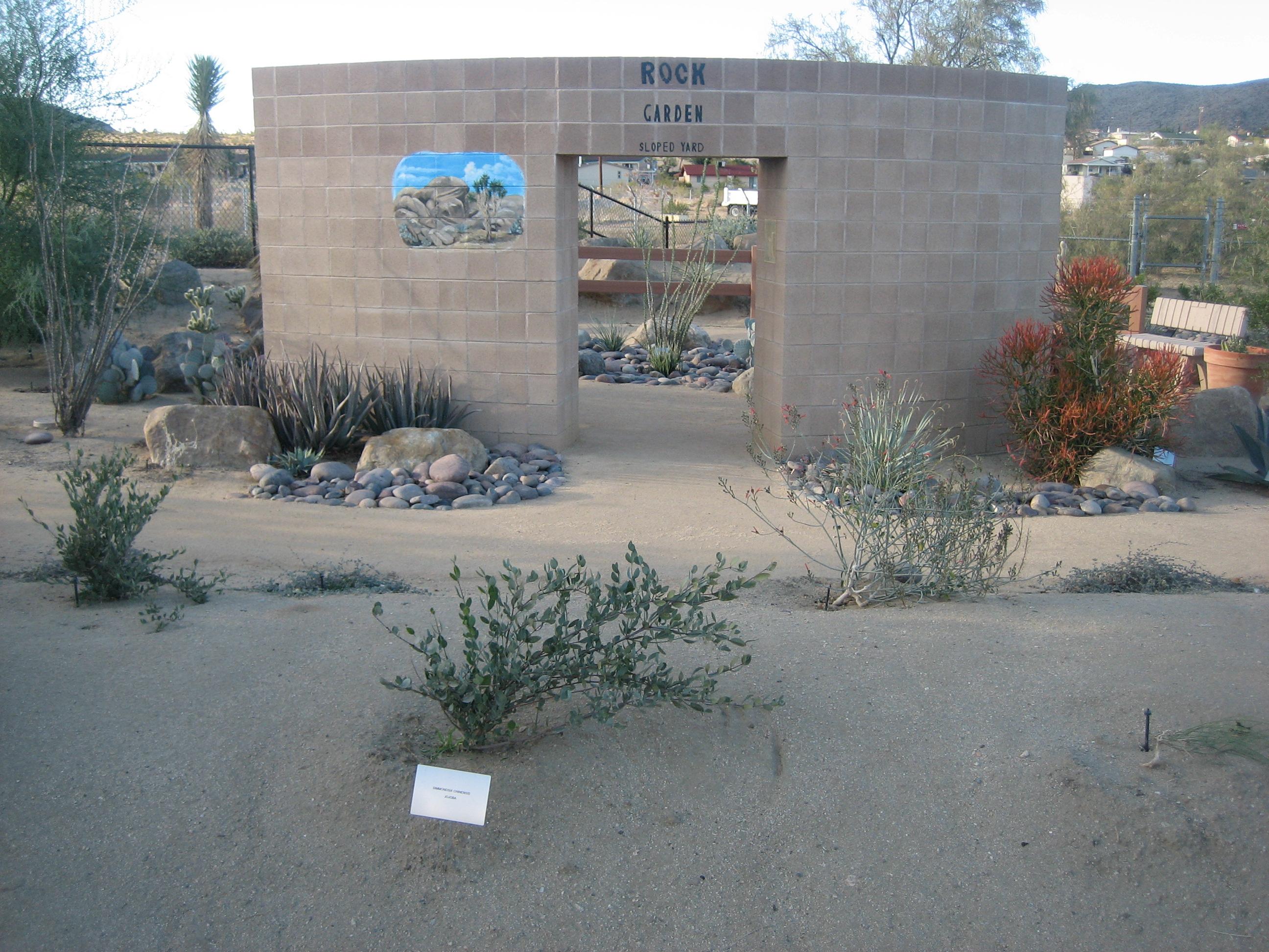 The Secret Mojave Garden