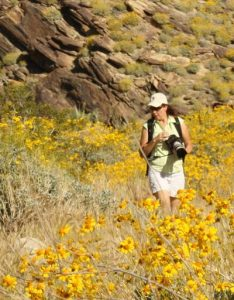 Lynn Bremner photographing the wildflowers in Indian Canyons, Palm Springs, CA.