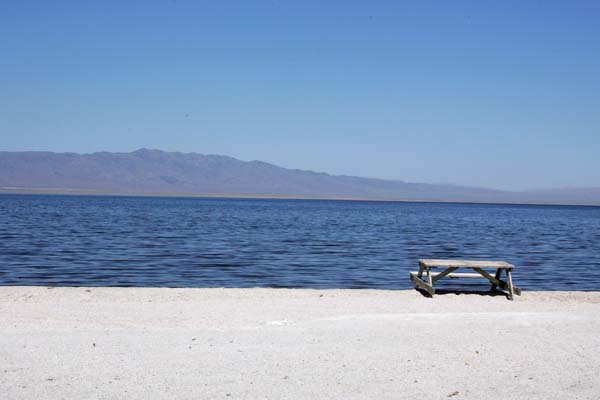 The view at Salton Sea Beach.