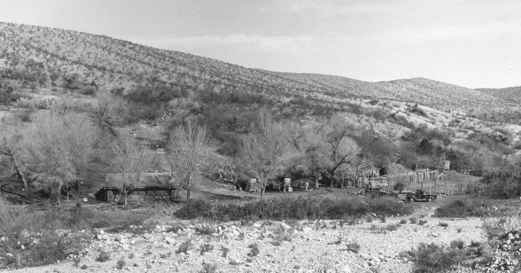 The Tassi Ranch as it looked in 1947 when the cottonwoods were young. NPS Archives