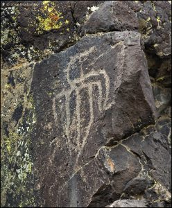 This bird-like petroglyph is thought to be composed of three different drawings.