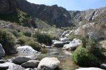 creek_2489