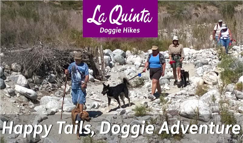 Dog Hikes in La Quinta