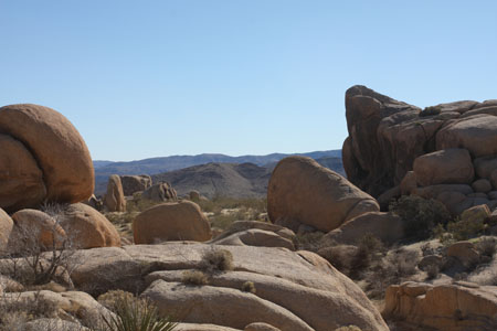 View of the landscape at White Tank Campground.  A wonderland of boulders to climb and explore.
