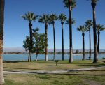 Lake Cahuilla has picnic areas, large grassy lawns and is dog-friendly (dogs must be on a leash).