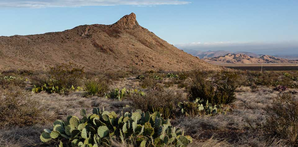Coming Soon: Lone Mountain Trail at Big Bend NP