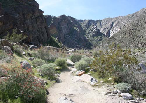 The Tahquitz Canyon Hiking Trail