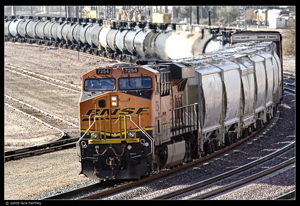 A 300mm lens with a 1.4 converter was used to create this image. Note how compressed the engine and rail cars look.