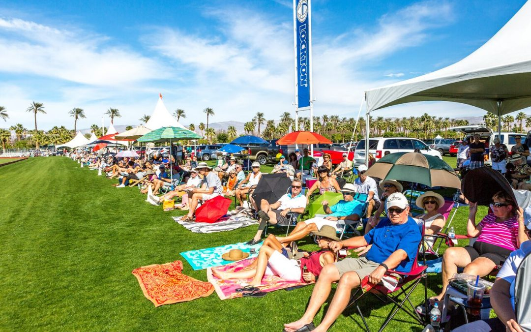 Tailgate at Sunday Polo