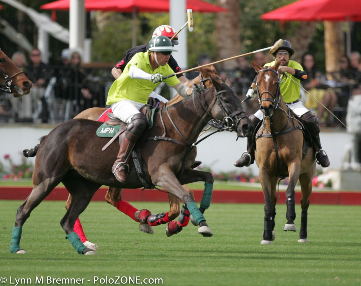 from a game of polo with