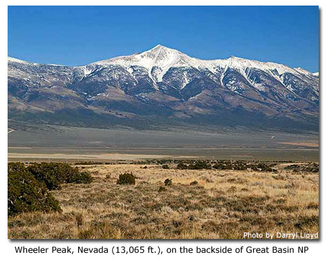 Great Basin National Park Nevada DesertUSA