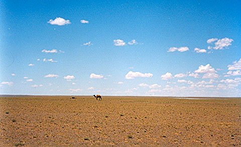The Gobi Desert: Location, Landscape - DesertUSA