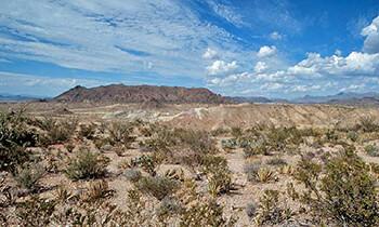 The North American Deserts Desertusa