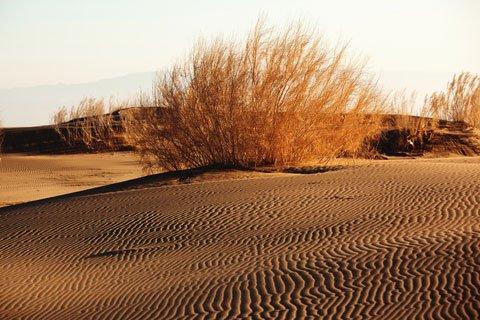 Gobi desert - ThingLink