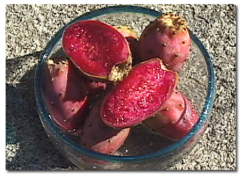 Ly Pear Cactus Fruit