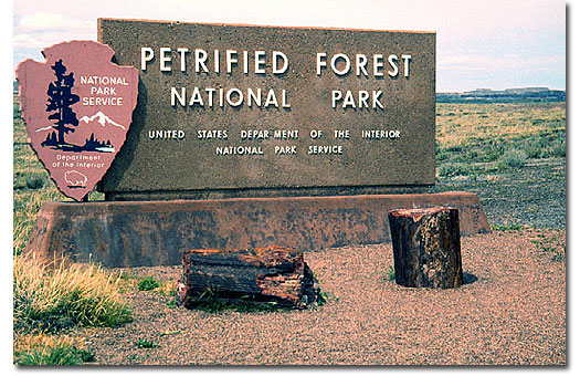 Petrified Forest National Park - DesertUSA on death valley map in us, colorado map in us, las vegas map in us, grand canyon map in us, new mexico map in us, arizona map in us, glacier map in us, yellowstone map in us,