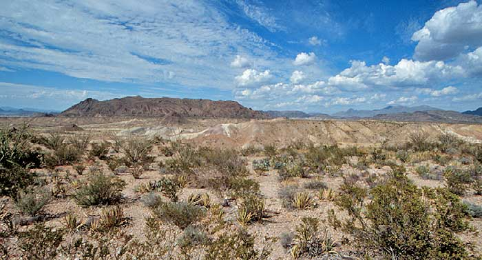 Chihuahuan Desert - DesertUSA