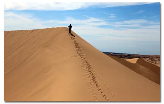 Imperial Sand Dunes Camping And Where To Stay