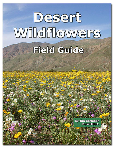 Desert Wildflower Field Guide Desertusa