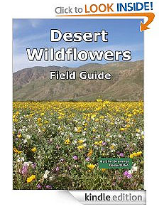 Wildflower Book